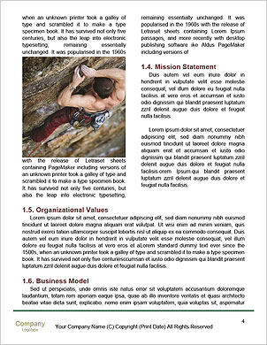 0000093730 Word Template - Page 4
