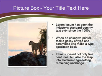 0000093732 PowerPoint Template - Slide 13