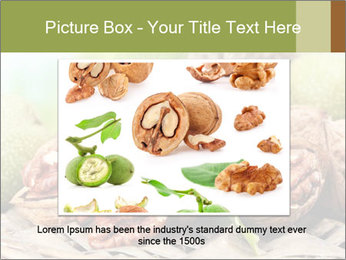 Walnuts with green leaves PowerPoint Templates - Slide 15