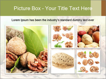 Walnuts with green leaves PowerPoint Templates - Slide 19