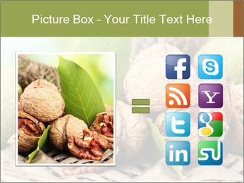 Walnuts with green leaves PowerPoint Templates - Slide 21