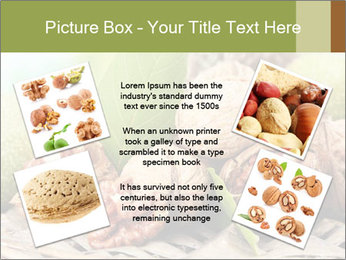 Walnuts with green leaves PowerPoint Templates - Slide 24