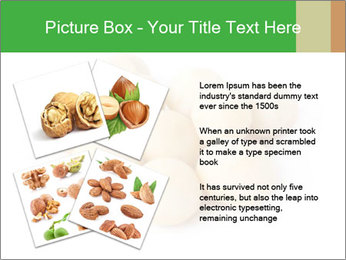 0000093739 PowerPoint Template - Slide 23