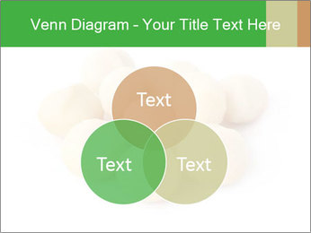 0000093739 PowerPoint Template - Slide 33