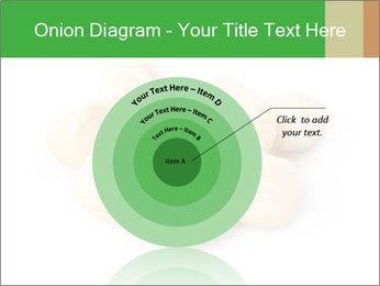 0000093739 PowerPoint Template - Slide 61