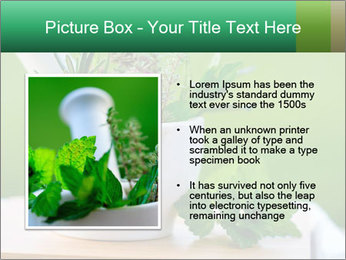 0000093741 PowerPoint Templates - Slide 13