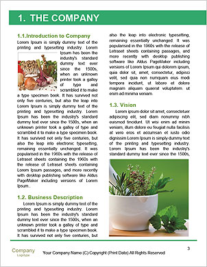 0000093741 Word Template - Page 3