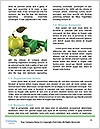 0000093744 Word Templates - Page 4