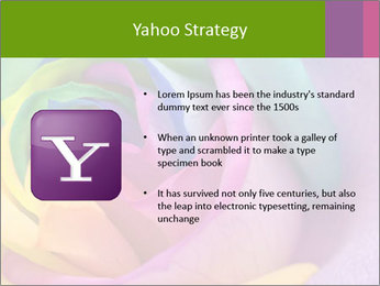 0000093747 PowerPoint Template - Slide 11