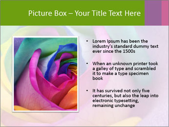 0000093747 PowerPoint Template - Slide 13
