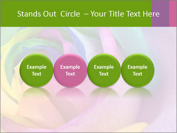 0000093747 PowerPoint Templates - Slide 76