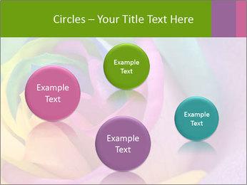 0000093747 PowerPoint Template - Slide 77