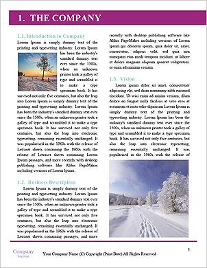 0000093748 Word Template - Page 3