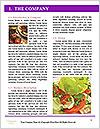 0000093756 Word Templates - Page 3