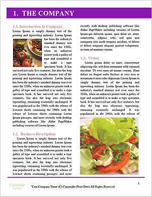 0000093756 Word Template - Page 3