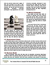 0000093758 Word Templates - Page 4