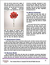 0000093759 Word Templates - Page 4