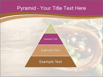 0000093762 PowerPoint Templates - Slide 30
