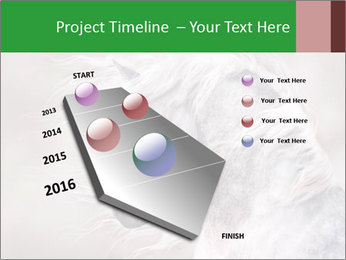 0000093765 PowerPoint Templates - Slide 26