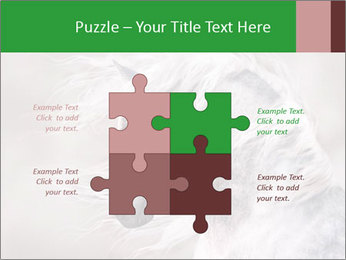 0000093765 PowerPoint Templates - Slide 43
