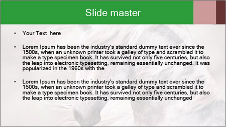 0000093765 PowerPoint Template - Slide 2