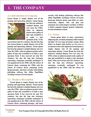 0000093769 Word Template - Page 3