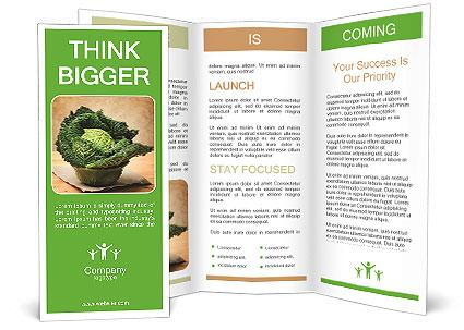 0000093771 Brochure Templates