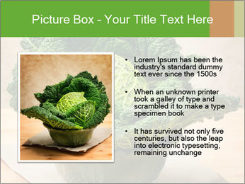 0000093771 PowerPoint Templates - Slide 13
