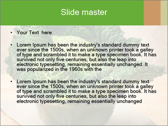 0000093771 PowerPoint Templates - Slide 2