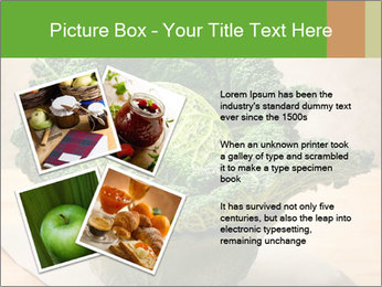 0000093771 PowerPoint Template - Slide 23