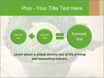 0000093771 PowerPoint Template - Slide 75