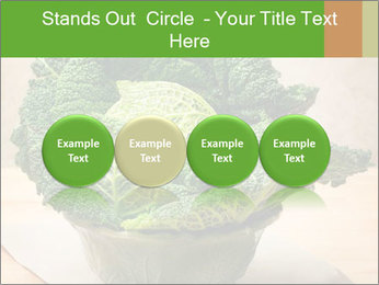 0000093771 PowerPoint Templates - Slide 76