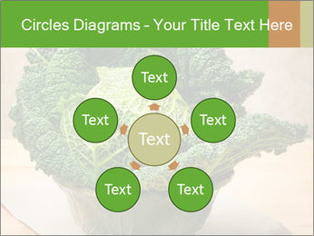 0000093771 PowerPoint Templates - Slide 78