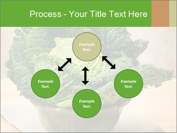 0000093771 PowerPoint Template - Slide 91