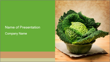 0000093771 PowerPoint Template