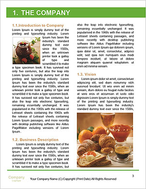 0000093771 Word Template - Page 3