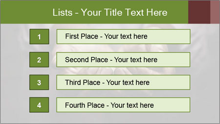 0000093776 PowerPoint Template - Slide 3