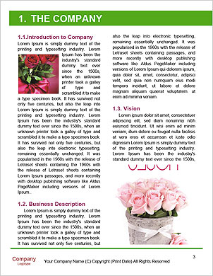0000093779 Word Template - Page 3