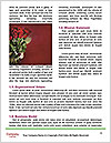 0000093779 Word Templates - Page 4
