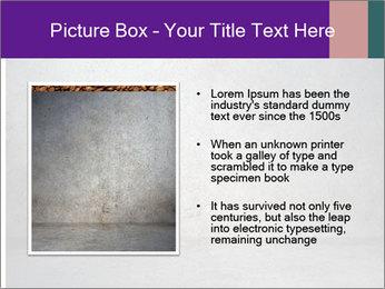 0000093782 PowerPoint Templates - Slide 13