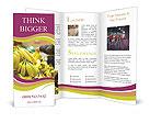 0000093792 Brochure Templates