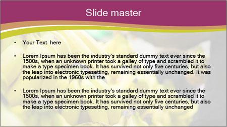 0000093792 PowerPoint Template - Slide 2