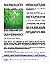 0000093806 Word Templates - Page 4