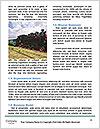 0000093808 Word Templates - Page 4