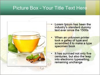 0000093815 PowerPoint Template - Slide 13