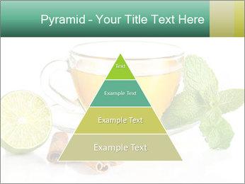 0000093815 PowerPoint Template - Slide 30