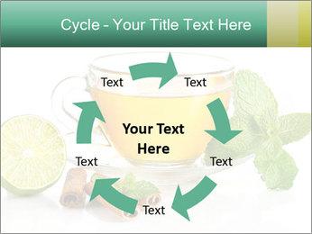 0000093815 PowerPoint Template - Slide 62