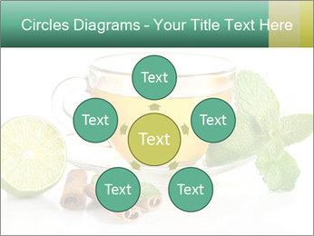 0000093815 PowerPoint Template - Slide 78