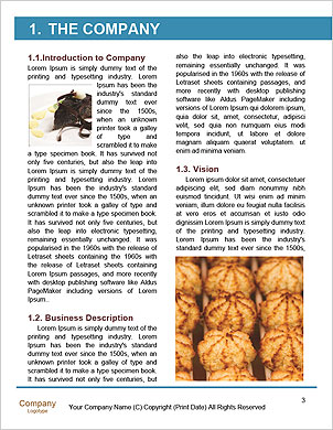 0000093818 Word Template - Page 3