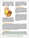 0000093820 Word Template - Page 4